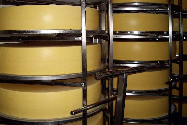 Свежеизготовленный швейцарский сыр на складе.