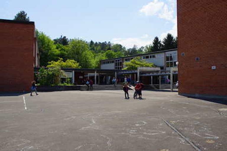 Швейцарская школа